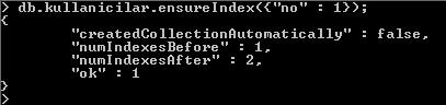 MongoDB Index Oluşturma